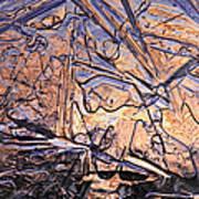 Art Of Ice 2 Art Print