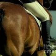 Art Of The Horse Art Print