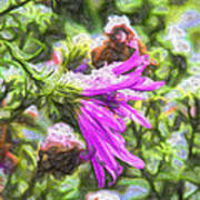 Artistic Aster In First Snow Fall 2 Imp 2-2 Art Print