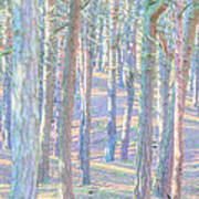 Artistic Trees Art Print