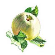 Artz Vitamins Series A Happy Green Apple Art Print