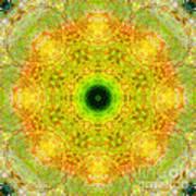 Moss Mandala Art Print
