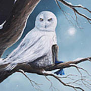 White Snow Owl Painting Art Print