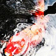 Asian Koi Fish - Black White And Red Art Print