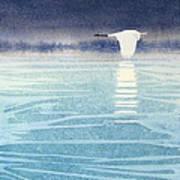 Asian Swan Art Print