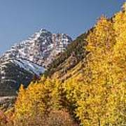 Aspen And Mountains 4 Art Print