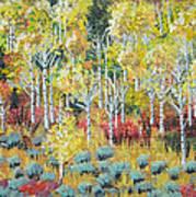 Aspen And Sage  Art Print