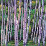 Aspen Enclave Art Print