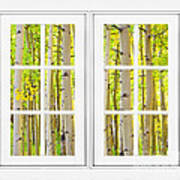 Aspen Forest White Picture Window Frame View Art Print