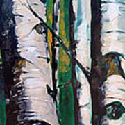 Aspen Glade At Dusk Art Print