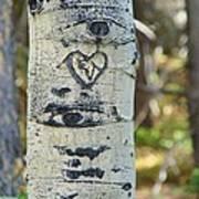 Aspen Love Art Print