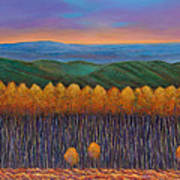 Aspen Perspective Art Print by Johnathan Harris