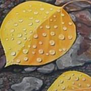 Aspen Rain Art Print
