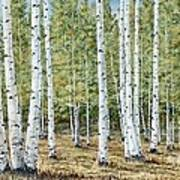 Aspen South Saddle Blue Mtn 24 X 48 Art Print