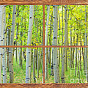 Aspen Tree Forest Autumn Picture Window Frame View  Art Print