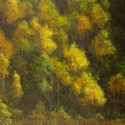 Aspens And Cattails Art Print