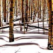 Aspens In Winter Art Print by Claudette Bujold-Poirier