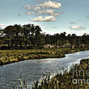 Assateague Island - A Nature Preserve Art Print