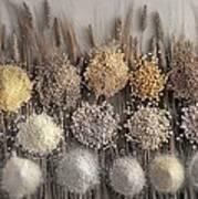 Assorted Grains And Flour Art Print