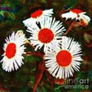 Asters Bright And Bold Art Print