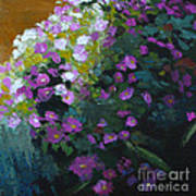 Asters Art Print by Melody Cleary