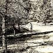 At The Lake-41 Art Print
