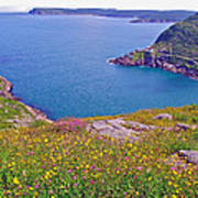 Atlantic Ocean From Signal Hill National Historic Site In Saint John's-nl Art Print