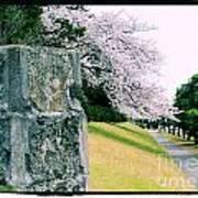 Atsugi Pillbox Walk  I Art Print