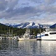 Auke Bay Harbor Art Print