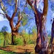 Australian Native Tree 2 Art Print