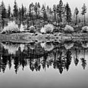 Autumn Reflection Black And White Art Print
