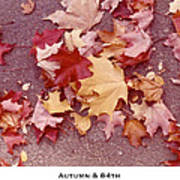 Autumn And Eighty Fourth Art Print