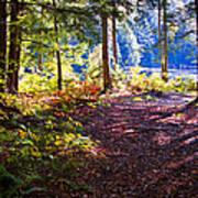 Autumn At Cary Lake Art Print