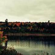Autumn At Deer Lake Art Print