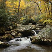 Autumn At Stony Creek Art Print