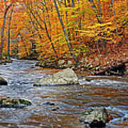 Autumn At The Black River Art Print