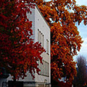 Autumn At The Grants Pass Courthouse Art Print