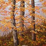 Autumn At Tishomingo State Park Art Print