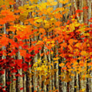 Autumn Banners Art Print