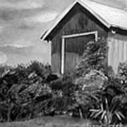 Autumn Barn - Upclose Cropped - Black And White Art Print