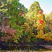 Autumn Beauty Art Print