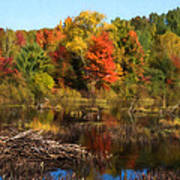 Autumn Beaver Pond Reflections Art Print