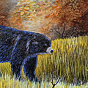 Autumn Black Bear Art Print