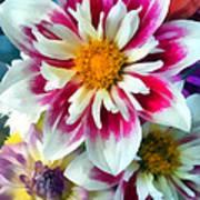 Autumn Bouquet Art Print