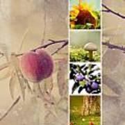 Autumn Collage Art Print
