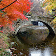 Autumn Color And Old Stone Arched Art Print