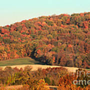 Autumn Color On Rolling Hills Art Print