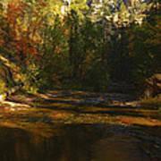Autumn Colors By The Creek  Art Print