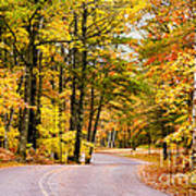 Autumn Colors - Colorful Fall Leaves Wisconsin - II Art Print