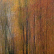 Autumn Colors IIi Art Print